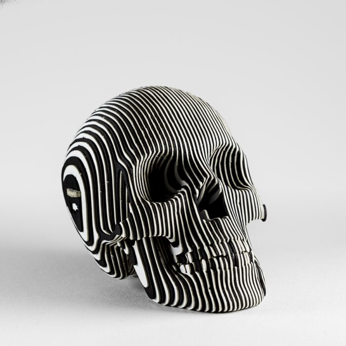 Black and White Card Skull