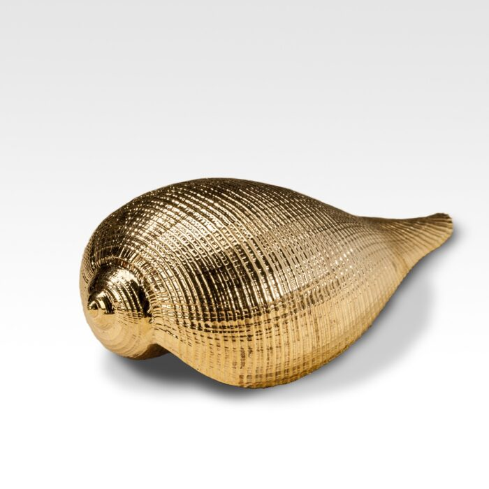 Gilded Fig Shell