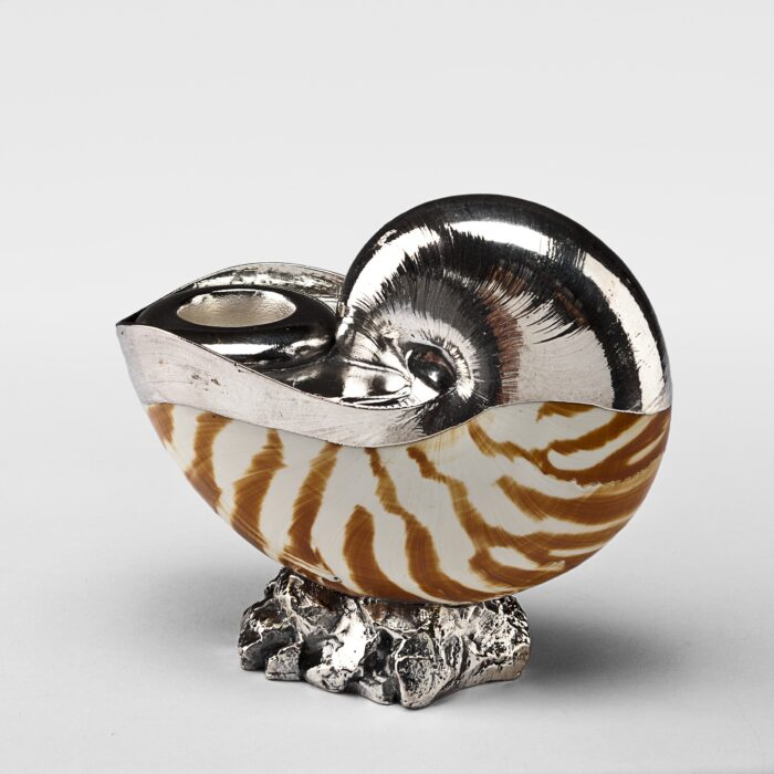 Partially Silvered Nautilus Tiger Shell Candlestick