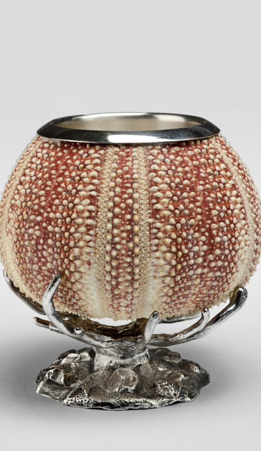 Sea Urchin Silver Penholder On Coral Base