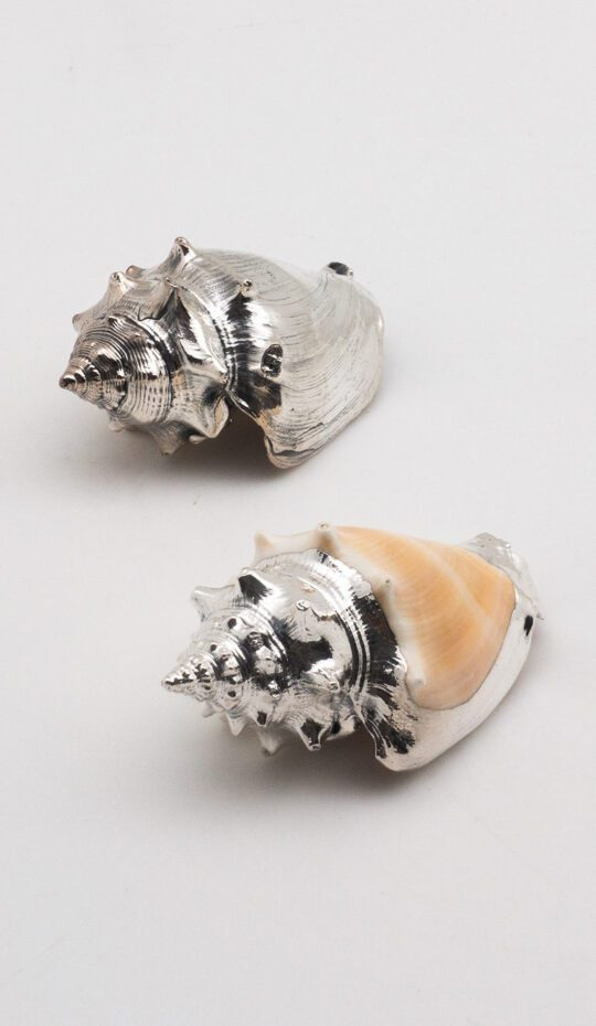 Silver Plated Sea Shell