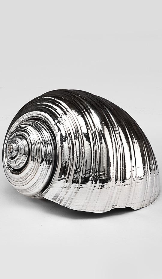 Tonna Silvered 3″ – 8″