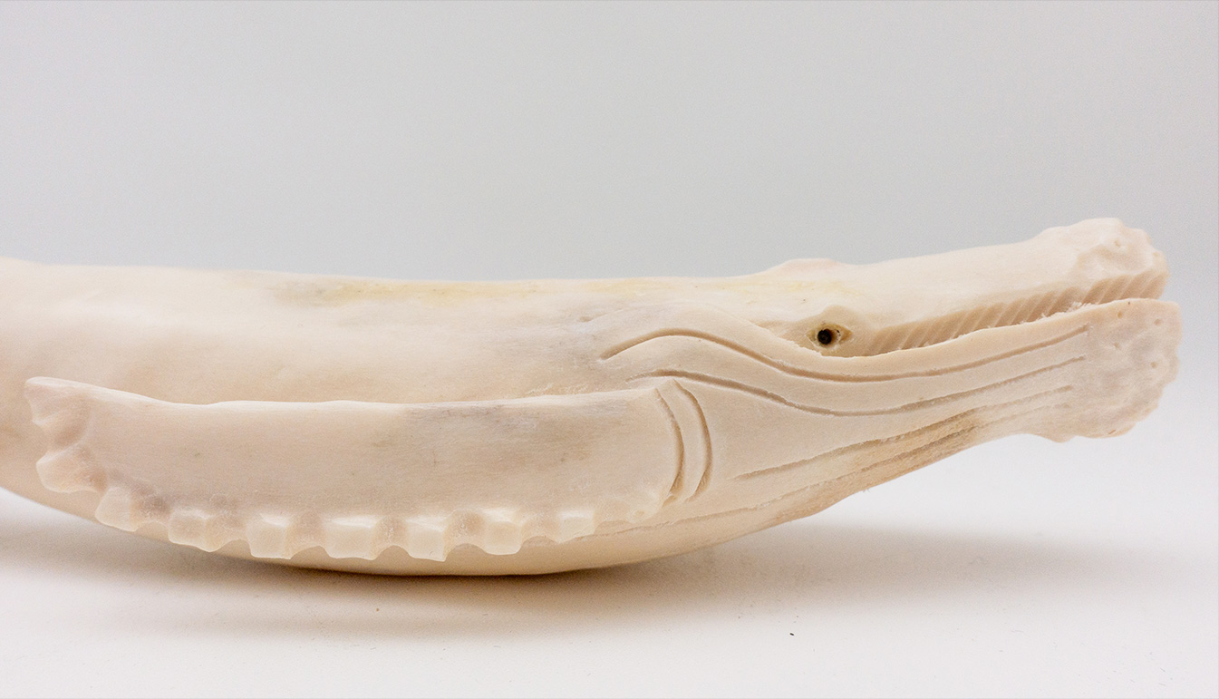 Humpback Whale Moose Antler Carving