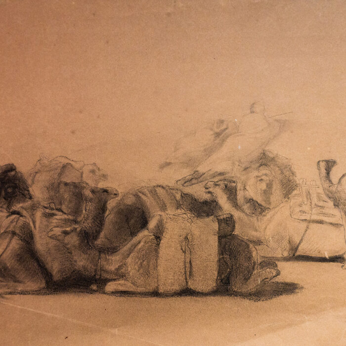 Resting Camel Drawing on Paper by George Washington 'Artist'