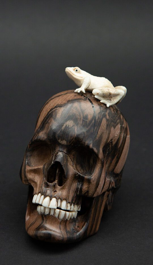Skull with a carved antler frog