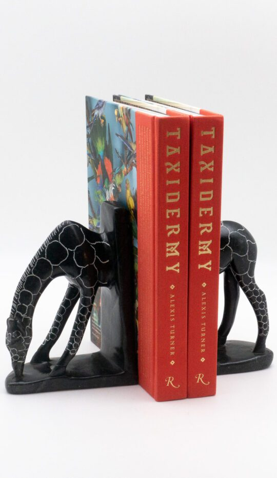 Giraffe Stone Bookends