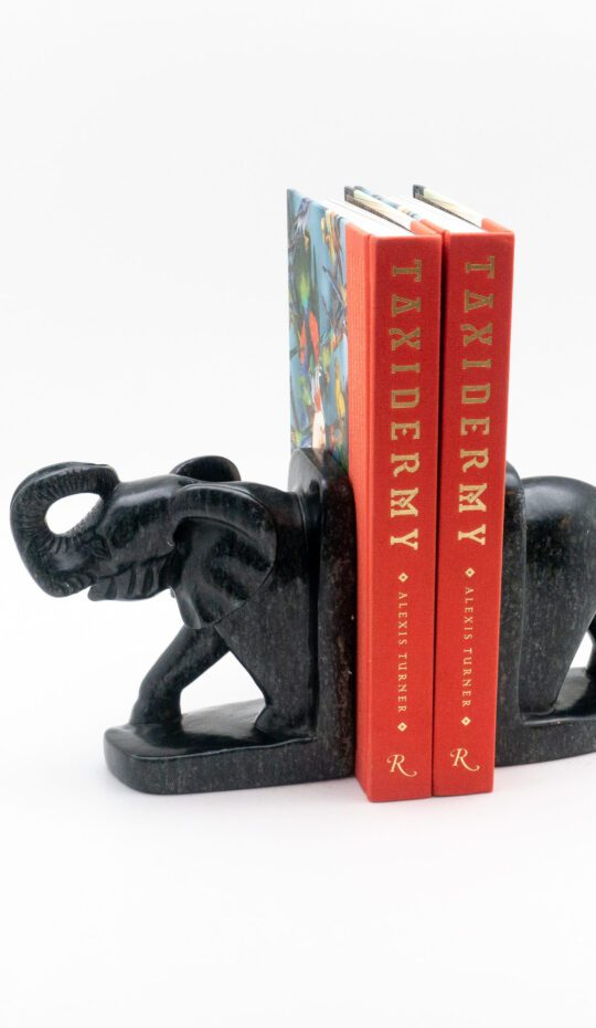 Elephant Stone Bookends
