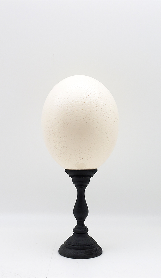 Mounted Ostrich Egg, Small