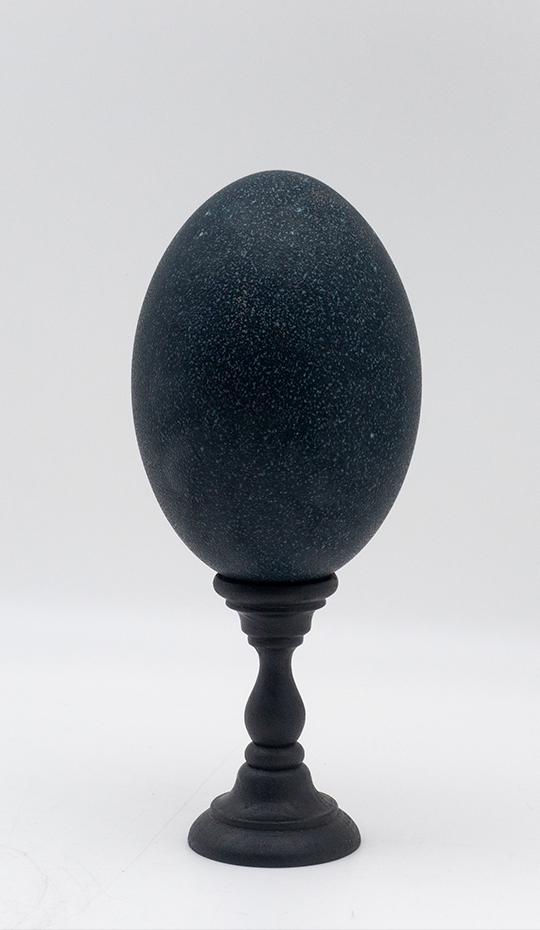 Mounted Emu Egg, Small