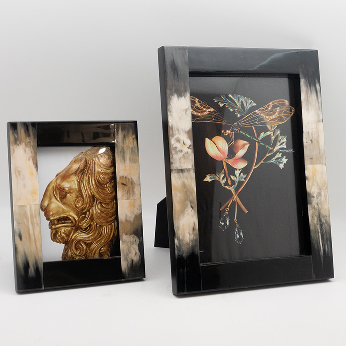 Black-White Horn Picture Frame