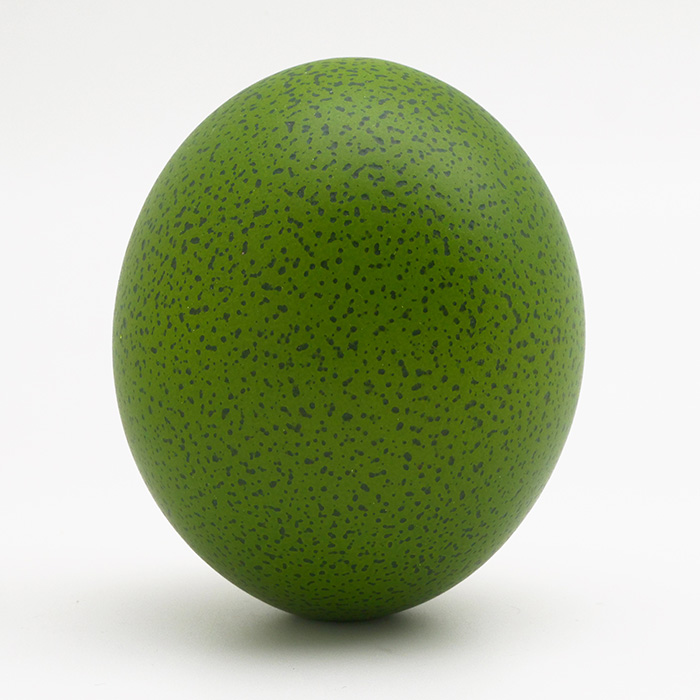 Speckled Ostrich Egg, Green, Matte