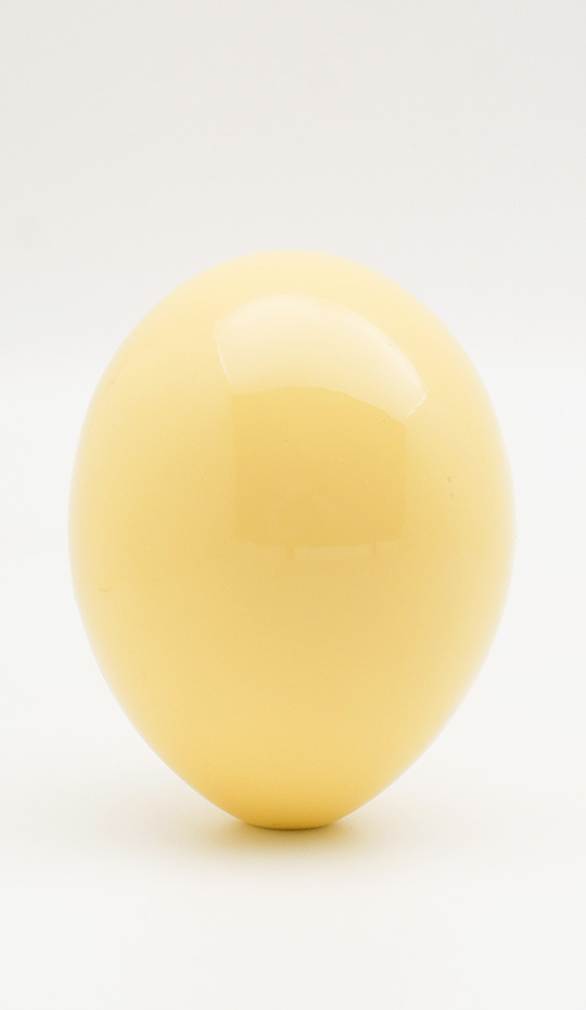 Lacquered Ostrich Egg, Yellow
