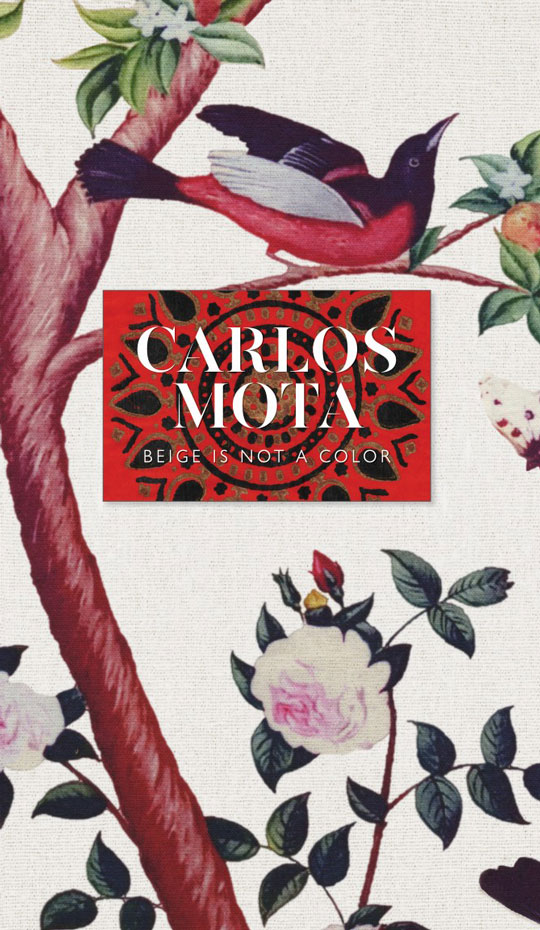 Beige is Not A Color: Carlos Mota