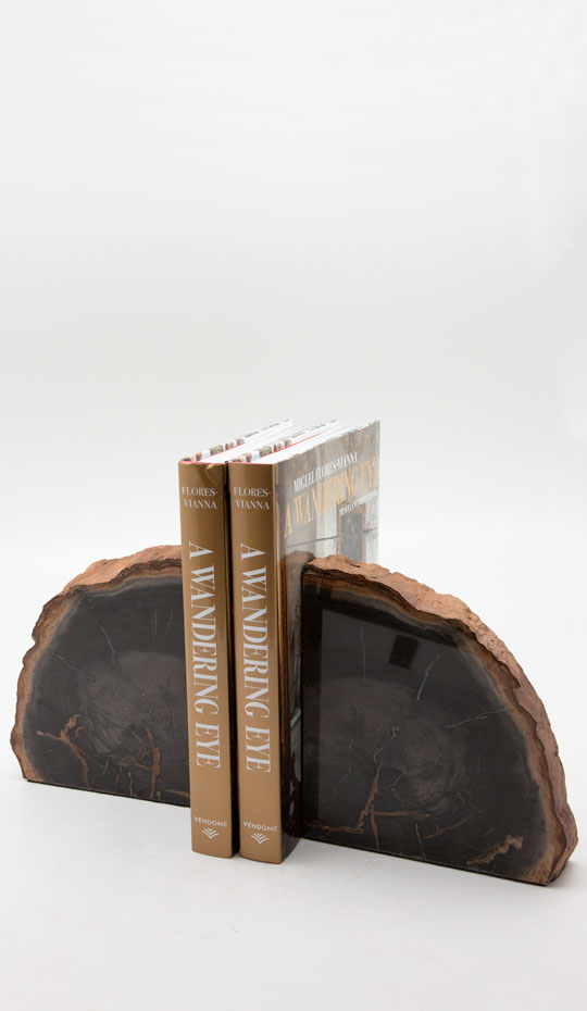 Brown Petrified Wood Bookends