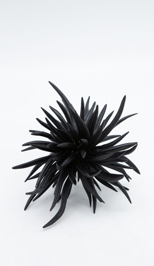 black-ceramic-walking-urchin