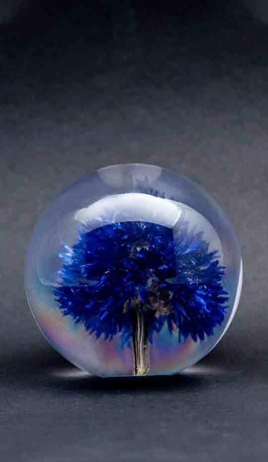 blue-cornflower-paperweight